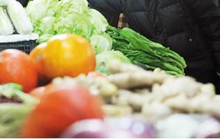津产蔬菜 近半设施化种植